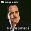 Mi Amor Amor - Single