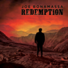 Just 'Cos You Can Don't Mean You Should - Joe Bonamassa