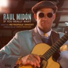 If You Really Want, Raul Midón, Metropole Orkest & Vince Mendoza