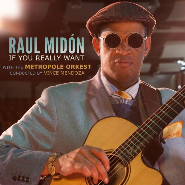 Raul Midón And Metropole Orkest - Sunshine