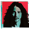 Chris Cornell - Chris Cornell, Soundgarden & Temple of the Dog