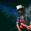 Black Joe Lewis & The Honeybears - The Difference Between Me & You  artwork