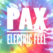 Electric Feel (Extended Mix)