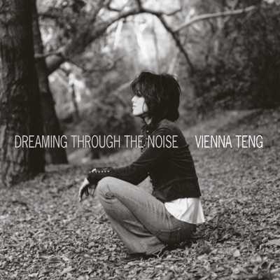Dreaming Through The Noise - Vienna Teng