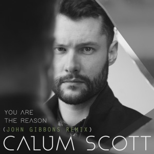 You Are the Reason (John Gibbons Remix) - Single Mp3 Download