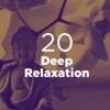 20 Songs for Deep Relaxation Nature Sounds and New Age Music