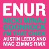 I'm That Chick (feat. Nicki Minaj & GoonRock) [Austin Leeds and Mac Zimms Remix] - Single, Enur