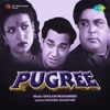Ek Tir Chalanewale Ne Dil Loot Liya From Pugree Single