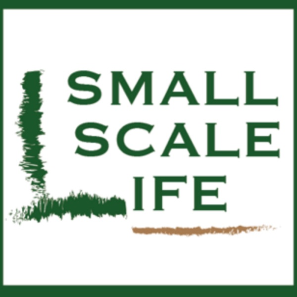 Small Scale Life