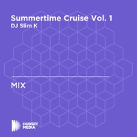 Summertime Cruise, Vol. 1 (DJ Mix) - Future & Drake