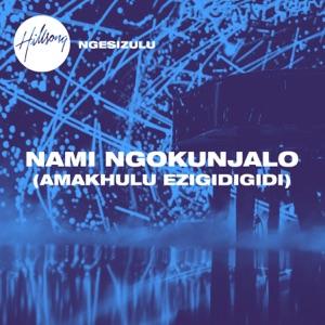 Nami Ngokunjalo (Amakhulu Ezigidigidi) - Single Mp3 Download