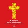 Ravelord (feat. Kalibwoy & Mr. Polska) [DJ Paul Elstak Radio Edit Hardcore Remix] - LNY TNZ & BOAZ