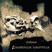 Machinalis Tarantulae - Rot