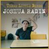 Joshua Radin - Three Little Birds artwork