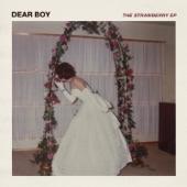Dear Boy - Semester