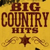 Chicken Fried by Zac Brown Band iTunes Track 22