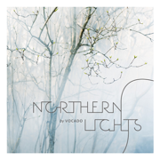 Northern Lights - Vocado - Vocado