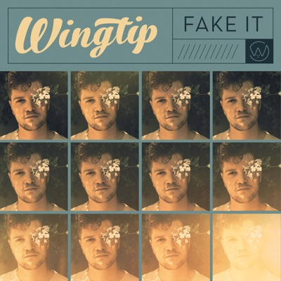 Fake It - Single MP3 Download