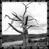 Poppy Ajudha - Patience - EP artwork
