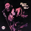 Muddy Waters: Live (At Mr. Kelly's) [Reissue] ジャケット写真