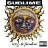 Sublime - 40oz. to Freedom  artwork