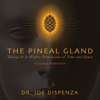 The Pineal Gland: Tuning in to Higher Dimensions of Time and Space - Dr. Joe Dispenza