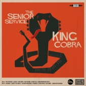 The Senior Service - Night of the Knives