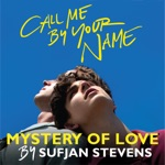 "Sufjan Stevens - Mystery of Love (From ""Call Me By Your Name"")"