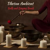 Spiritual Meditation with Gongs