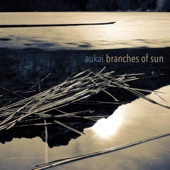 Aukai - Distracted by Clouds