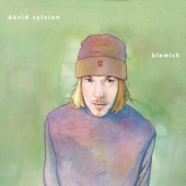 David Sylvian - The Heart Knows Better