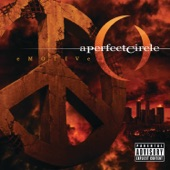A Perfect Circle - When the Levee Breaks