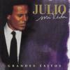 Mi Vida - Grandes Éxitos - Julio Iglesias