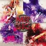 Album - mr. big - to be with you
