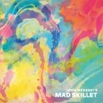 John Medeski's Mad Skillet - Invincible Bubble