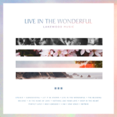 Live In The Wonderful-Lakewood Music
