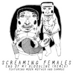 Screaming Females - End of My Bloodline (Remix) [feat. Sammus & Moor Mother]