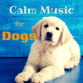Calm Music for Dogs – Relaxing Nature Sounds to Soothe Anxious Pet, Music Therapy, Pet Relaxation