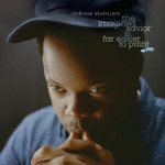 Ambrose Akinmusire - Rollcall For Those Absent