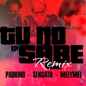 Tu No Lo Sabe (feat. Padrino Lzf & MelyMel) - Single Mp3 Download