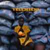 Velemseni - Shisa artwork