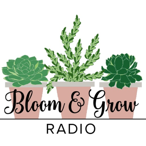 Cover image of Bloom and Grow Radio