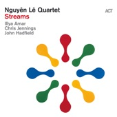 Nguyên Lê - The Single Orange (with Illyar Amar, Chris Jennings & John Hadfield)