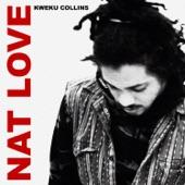 Kweku Collins - Vanilla Skies (feat. Taylor Bennett)