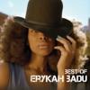Erykah Badu - Back In the Day
