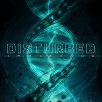Evolution (iTunes)