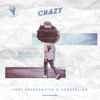 Crazy - Lost Frequencies & Zonderling mp3