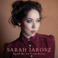 Sarah Jarosz - Simple Twist of Fate artwork