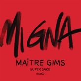 Mi Gna (Maître Gims Remix) [feat. Hayko] - Single