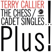 Terry Callier - Blues